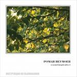 На CD издан новый альбом Романа Неумоева